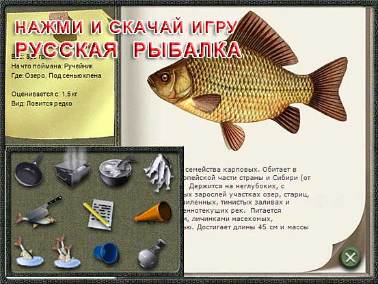 скачать русскую рыбалку бесплатно одиночная